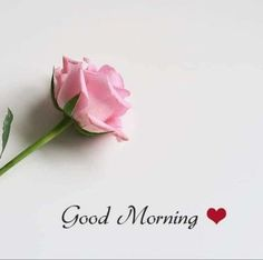 special good morning wishes images, special good morning wishes pictures, special good morning wishes pics