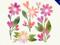 【手繪花草】15個超美的花草手繪圖下載