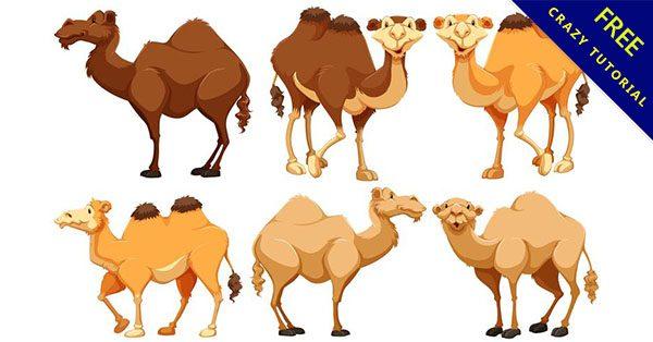 【駱駝卡通】16套可愛的卡通駱駝下載