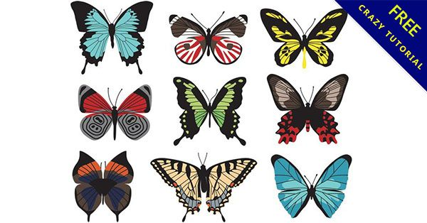 【q版蝴蝶】編輯必備的17套可愛的蝴蝶q版下載