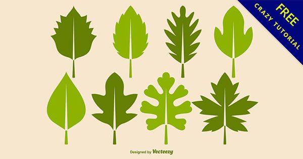 【葉子圖案】小編推薦:18張有設計感的葉子圖案下載