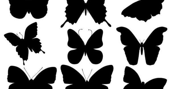 【蝴蝶剪影】實用推薦:11張完美的蝴蝶剪影下載