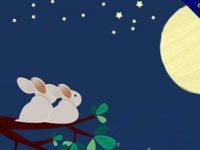 【中秋節圖庫】60款中秋節免費圖庫素材下載,中秋佳節專用圖庫