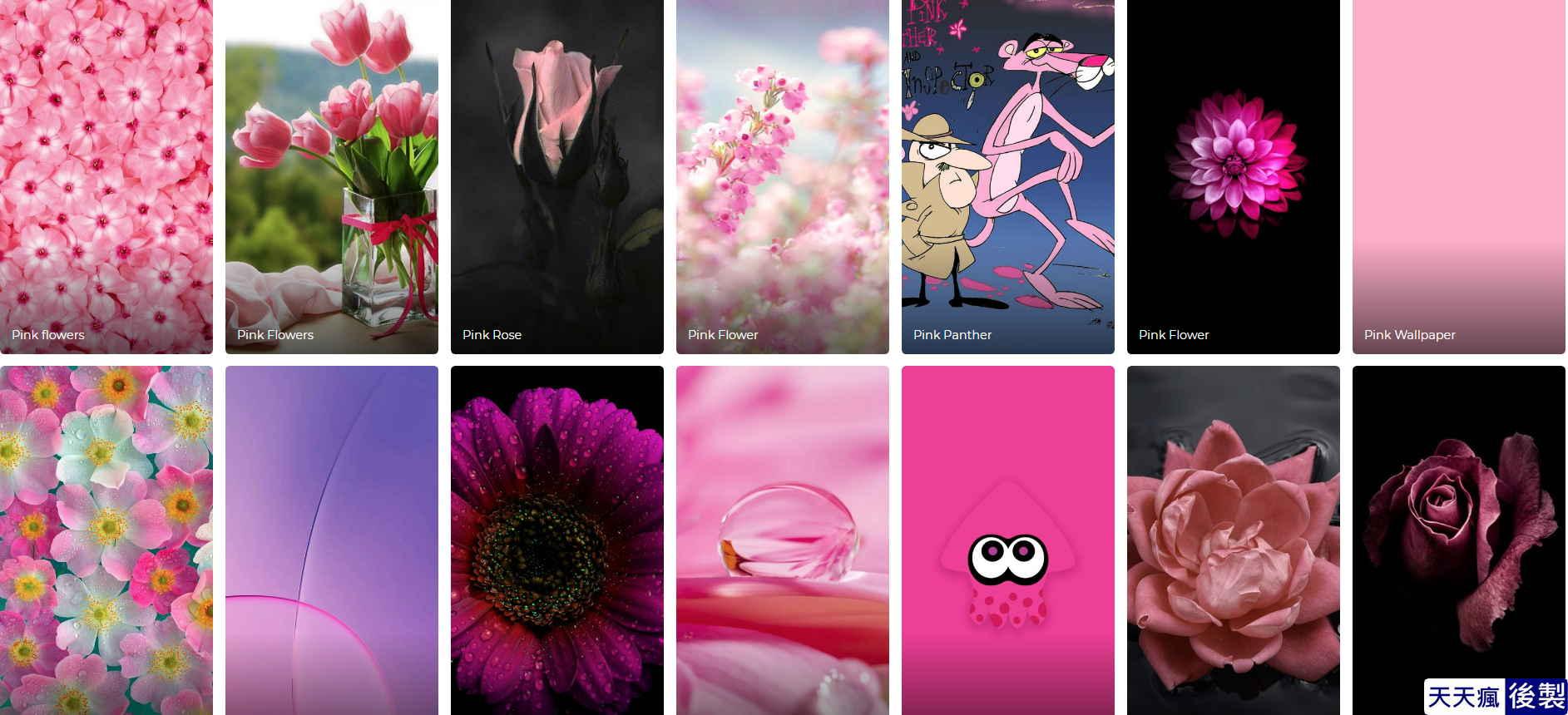 粉色手機桌布