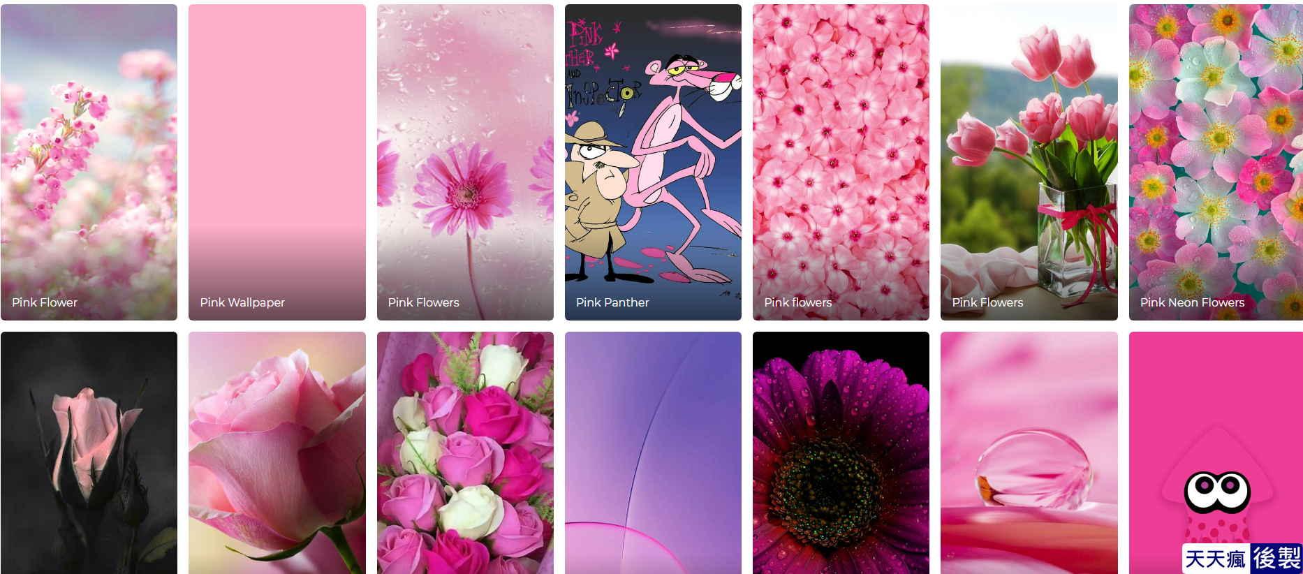 粉色桌布下載