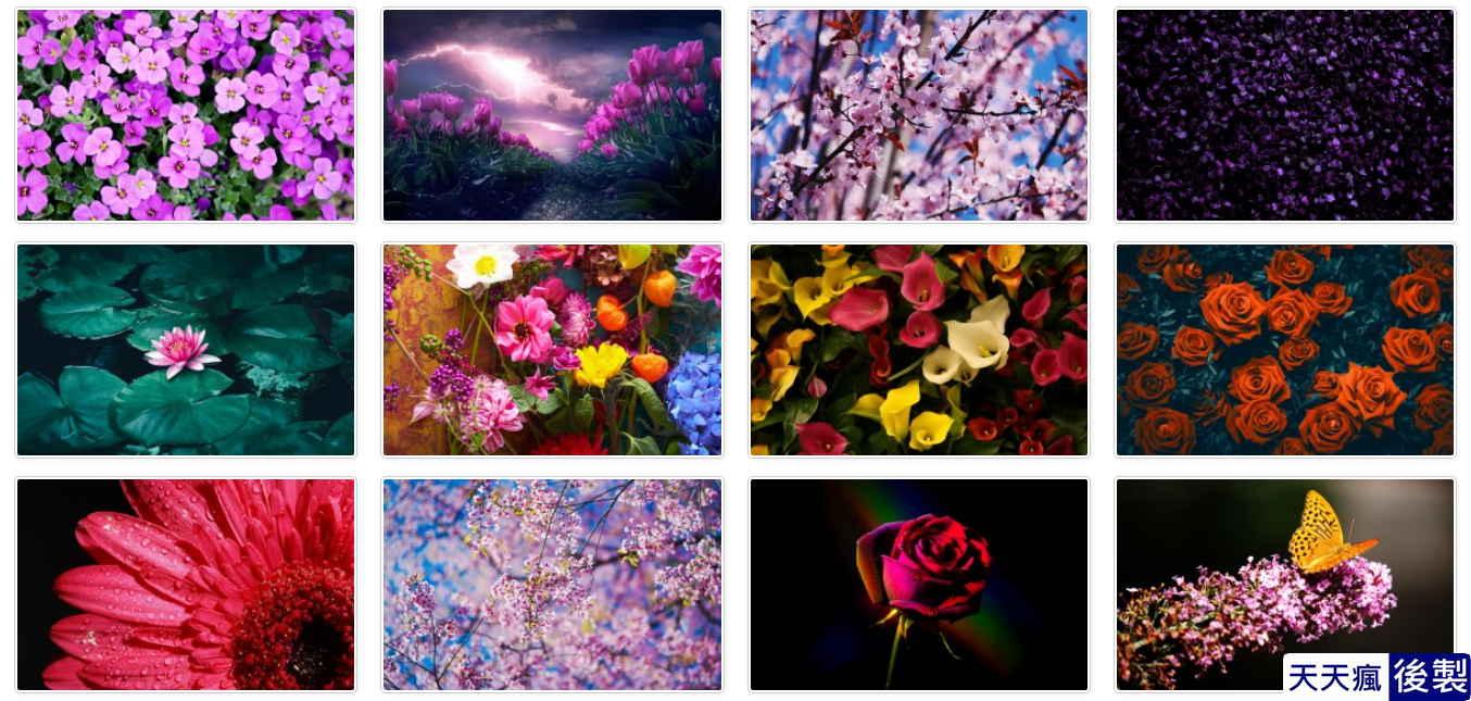 花朵桌布圖下載