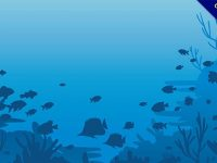 【海洋卡通】小編推薦:27套可愛的海洋卡通圖下載