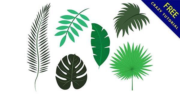 【葉子圖片】葉子推薦:26個可愛的葉子圖片素材下載