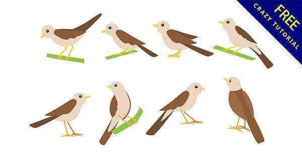【鳥插畫】插畫推薦:25個卡通的鳥插畫素材下載