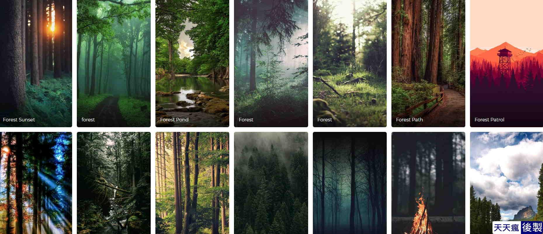 森林桌布下載
