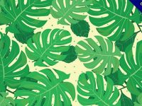 【樹葉背景】背景推薦:43套卡通的樹葉背景圖案下載