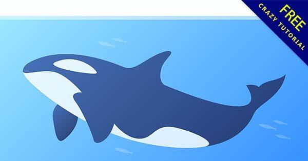 【鯨魚q版】q版推薦:20套可愛的鯨魚q版圖下載